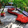 Giờ chào cờ đặc biệt của học sinh hướng về biển Đông